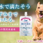 【ペットの贅沢水素水】最安値通販取扱い販売店舗《愛犬といつまでも長く過ごしたい方へ》