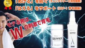 育毛【QEPPERケッパー】ローション・サプリメント楽天・Amazon価格比較!《薄毛が進行していませんか?》